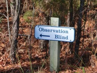 observation blind